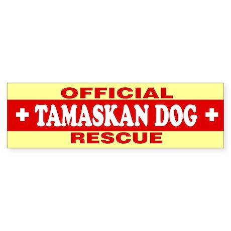 TAMASKAN DOG Bumper Sticker