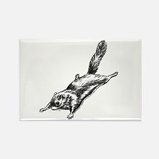 Flying Squirrel Illustration Rectangle Magnet