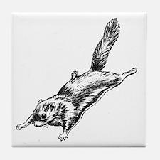 Flying Squirrel Illustration  Tile Coaster