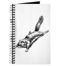 Flying Squirrel Illustration Journal