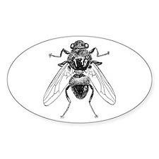 Fly Illustration Pen & Ink Art Oval Decal
