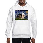 Starry / OES Hooded Sweatshirt
