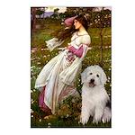 Windflowers / OES Postcards (Package of 8)