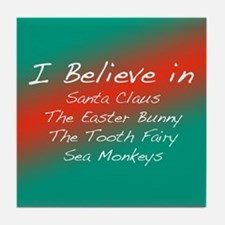 I Believe In Tile Coaster