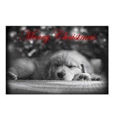 Merry Chrsitmas Golden Retriever Postcards