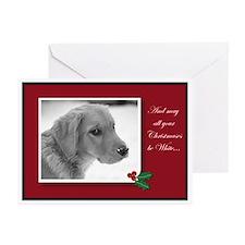 Golden Retriever White Christmas Cards