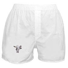 Mr. Donkey Boxer Shorts