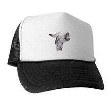 Mr. Donkey Trucker Hat
