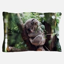 Funny Koala bear Pillow Case