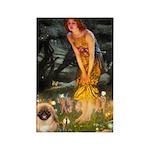 Fairies / Pekingese(r&w) Rectangle Magnet (10 pack