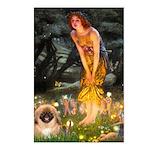 Fairies / Pekingese(r&w) Postcards (Package of 8)