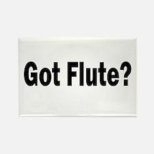 Got Flute? Rectangle Magnet (10 pack)