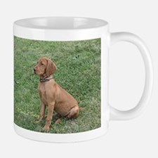 Vizsla Puppy Sitting - ZsaZsa Mugs