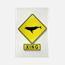 Humpback Whale XING Rectangle Magnet