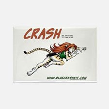 Crash Springs Rectangle Magnet