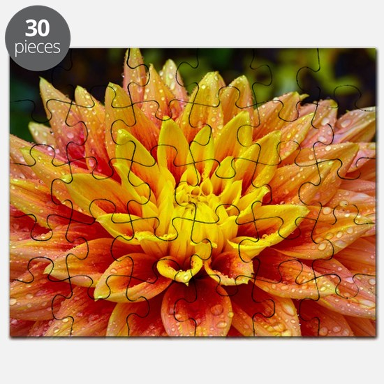 Beautiful orange and yellow dahlia Puzzle
