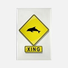 Dolphin XING Rectangle Magnet