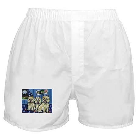 CAIRN TERRIER family moon Des Boxer Shorts