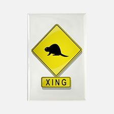 Beaver XING Rectangle Magnet
