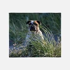Unique Old english bulldog Throw Blanket