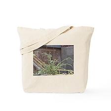 Bisbee 10 Tote Bag