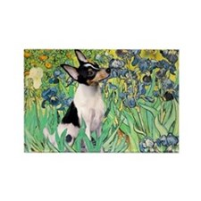 Irises / Toy Fox T Rectangle Magnet