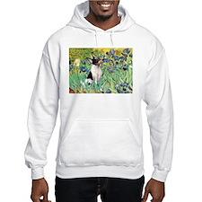 Irises / Toy Fox T Hoodie