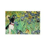 Irises / Toy Fox T Rectangle Magnet (10 pack)