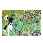 Irises / Toy Fox T Postcards (Package of 8)