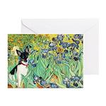 Irises / Toy Fox T Greeting Cards (Pk of 10)