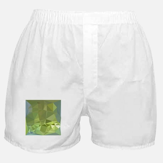 Olive Drab Abstract Low Polygon Background Boxer S
