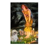 MidEve/Shih Tzu (P) Postcards (Package of 8)