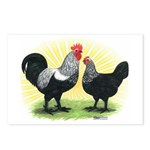 Iowa Blue Chickens Postcards (Package of 8)