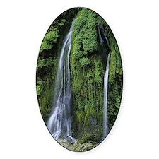 Garden of Eden Falls Oval Decal