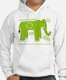 Elephant Facts Hoodie