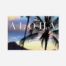Cute The hawaiian islands Rectangle Magnet