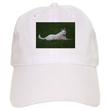 WGSD - 3 Baseball Cap