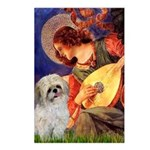 Angel3/Shih Tzu (P) Postcards (Package of 8)