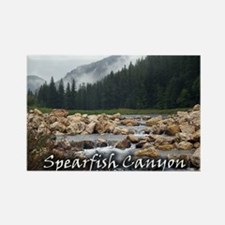 Spearfish Canyon, Black Hills Rectangle Magnet
