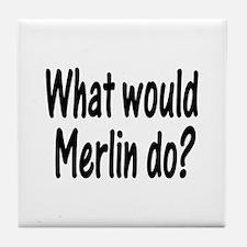 Merlin Tile Coaster