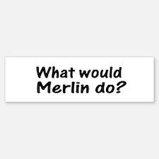 Merlin Bumper Bumper Bumper Sticker