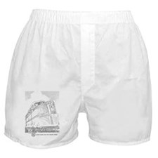 1941 Rock Island Locomotives Boxer Shorts