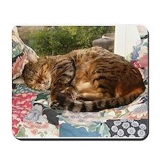 Benny sleeping Mousepad