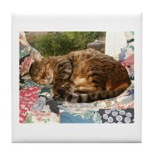 Benny sleeping Tile Coaster