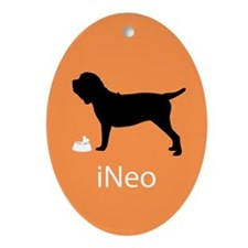 iNeo Oval Ornament