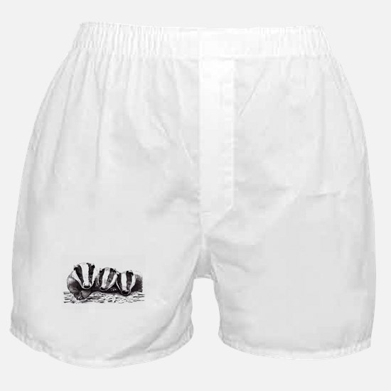 Badgers Boxer Shorts