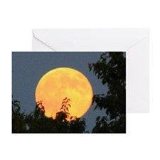 Harvest Moon Greeting Cards (Pk of 10)
