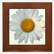 White daisy Framed Tile