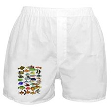 Tropical Fish ~ Boxer Shorts