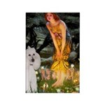 Fairies / Std Poodle(w) Rectangle Magnet